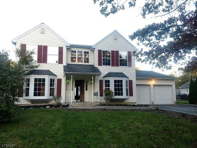 Mount Olive Twp. Single Family Home For Sale: 14 Hopkins Ct