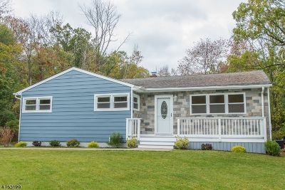 Randolph Twp. Single Family Home For Sale: 254 Center Grove Rd