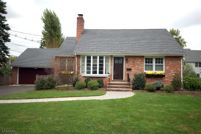 WESTFIELD Single Family Home For Sale: 1101 Irving Ave