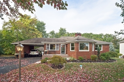 Bridgewater Twp. Single Family Home For Sale: 317 Country Club Rd