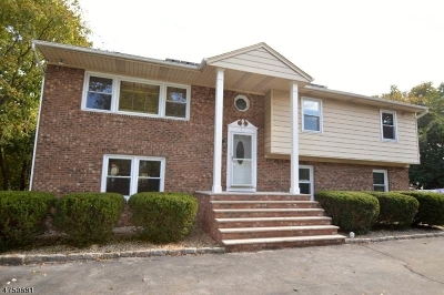 East Hanover Twp. Single Family Home For Sale: 287 River Rd