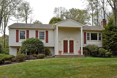 Randolph Twp. Single Family Home For Sale: 10 Darlene Ct