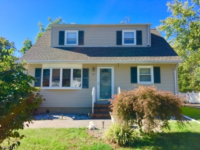 Bridgewater Twp. Single Family Home For Sale: 88 Linden St
