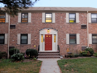 WESTFIELD Condo/Townhouse For Sale: 38 A2 Sandra Circle #38