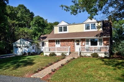 WESTFIELD Single Family Home For Sale: 503 Scotch Plains Ave