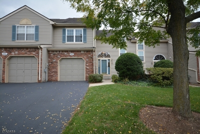 Bridgewater Twp. Condo/Townhouse For Sale: 3602 Vroom Dr