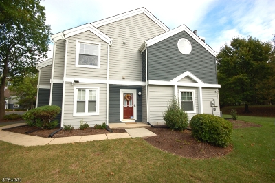 Bridgewater Twp. Condo/Townhouse For Sale: 258 Hedgerow Rd