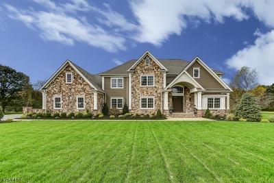 Warren Twp. Single Family Home For Sale: 1 Meyers Ln