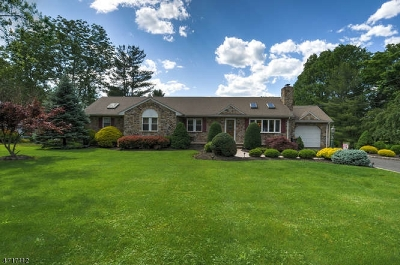 Bridgewater Twp. Single Family Home For Sale: 839 Meadow Road