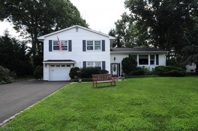 Cranford Twp. Single Family Home For Sale: 7 Rutgers Rd