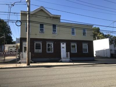 Belleville Twp. Commercial For Sale: 297-305 Cortlandt St #999