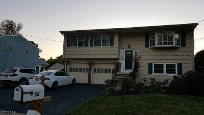 Mount Olive Twp. Single Family Home For Sale: 33 Ledgewood Rd