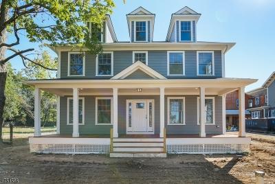 Madison Boro Single Family Home For Sale: 173 Ridgedale Ave