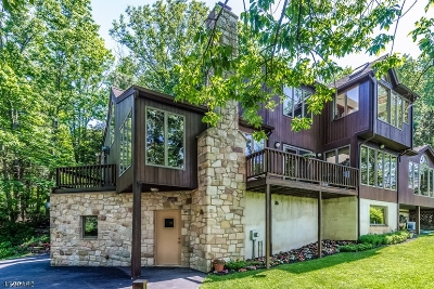 Holland Twp. Single Family Home For Sale: 524 Riegelsville Rd