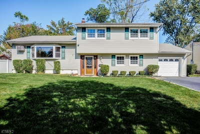Cranford Twp. Single Family Home For Sale: 104 Shadowlawn Way