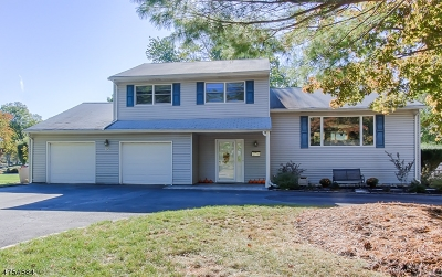Parsippany Single Family Home For Sale: 29 New England Dr