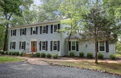 Bridgewater Twp. Single Family Home For Sale: 770 Weemac Rd