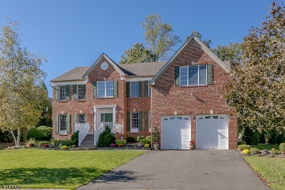 Bernards Twp. Single Family Home For Sale: 14 Paisley Ln