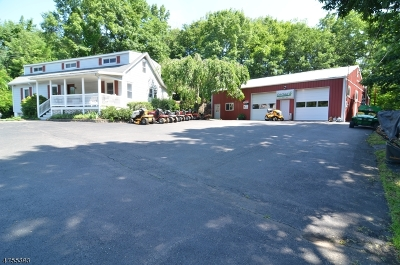 Bethlehem Twp. Single Family Home For Sale: 1093 State Route 173