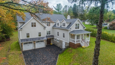 Bernards Twp. Single Family Home For Sale: 58 Haas Rd