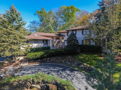 Millburn Twp. Single Family Home For Sale: 7 Lenape Rd