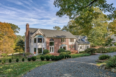 Bridgewater Twp. Single Family Home For Sale: 42 Timberline Dr