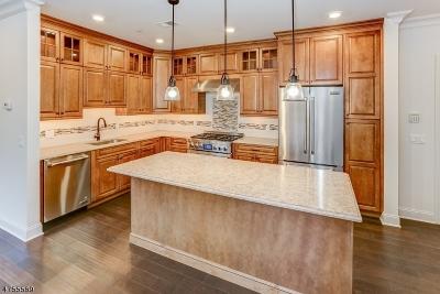 Bernardsville Boro Condo/Townhouse For Sale: 25-102 Mill St Residence 102 #102