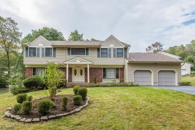 Morris Twp. Single Family Home For Sale: 17 Rambling Woods Dr