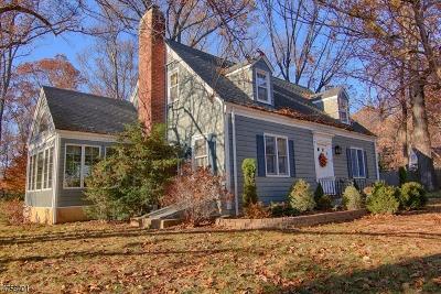 Bernardsville Boro Single Family Home For Sale: 10 Old Fort Rd