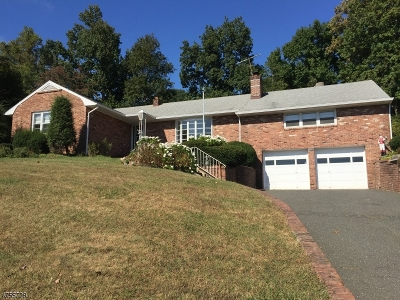 Mountainside Boro Single Family Home For Sale: 1078 Sunny Slope Dr