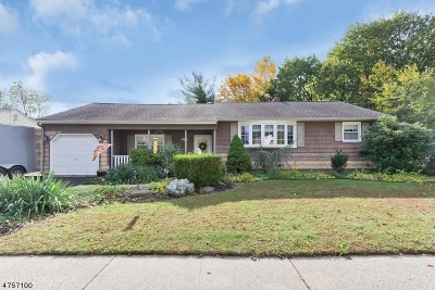 Piscataway Twp. Single Family Home For Sale: 66 9th St