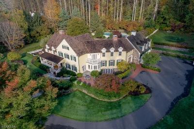 Harding Twp. Single Family Home For Sale: 117 Pleasantville Rd