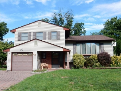 Clark Twp. Single Family Home For Sale: 42 Kenneth Pl