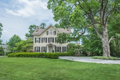 Morristown Town Single Family Home For Sale: 98 Washington Ave