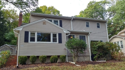 Parsippany Single Family Home For Sale: 414 Parsippany Blvd