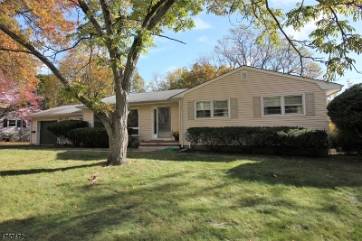 East Brunswick Twp. Single Family Home For Sale: 8 Stearns Rd