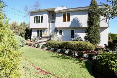 East Hanover Twp. Single Family Home For Sale: 116 Cedar St