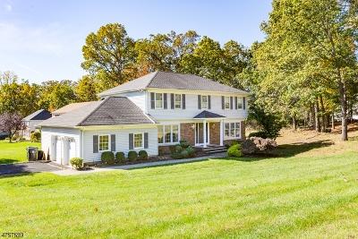 Hanover Twp. Single Family Home For Sale: 65 Poplar Dr