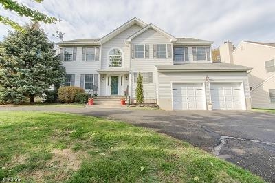 Bernardsville Boro Single Family Home For Sale: 7 Fox Hollow Trl