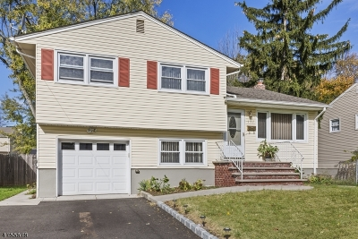 WESTFIELD Single Family Home For Sale: 137 Windsor Ave
