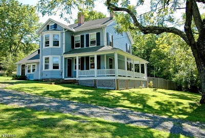 Bedminster Twp. Single Family Home For Sale: 1610 Black River Road