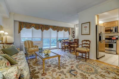 South Orange Village Twp. Condo/Townhouse For Sale: 609 S Orange Ave #5C