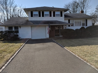 Clark Twp. Single Family Home For Sale: 447 Westfield Ave