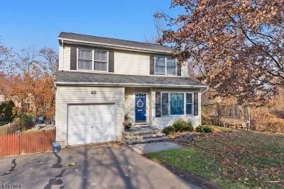 Bernardsville Boro Single Family Home For Sale: 3 Mine Ave