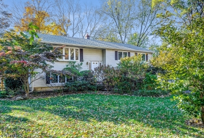 Livingston Twp. Single Family Home For Sale: 13 Bowling Dr