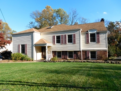 Livingston Twp. Single Family Home For Sale: 11 Highland Dr
