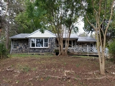 Holland Twp. Single Family Home For Sale: 404 Riegelsville Rd