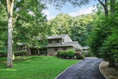 Warren Twp. Single Family Home For Sale: 4 Debby Ln