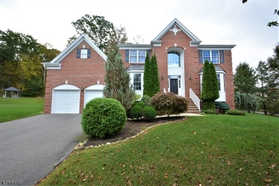 Mount Olive Twp. Single Family Home For Sale: 19 Chestnut Way