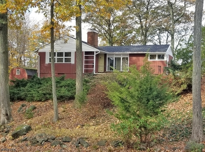 Sparta Twp. Single Family Home For Sale: 252 Alpine Trl